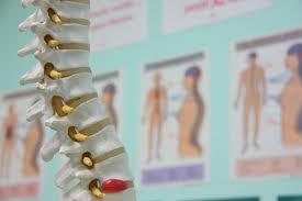 chiropractor 73120